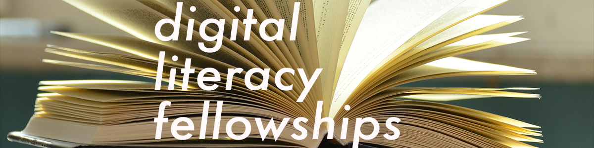 digital literacy fellowships