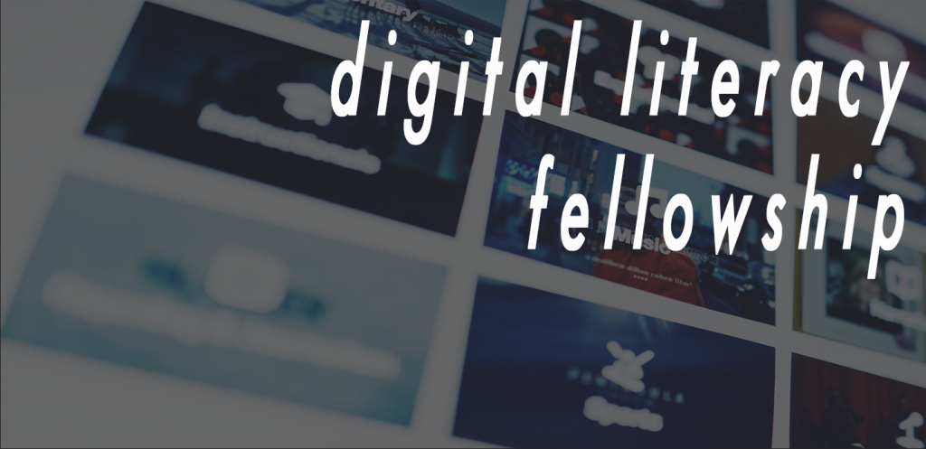 digital literacy fellowship