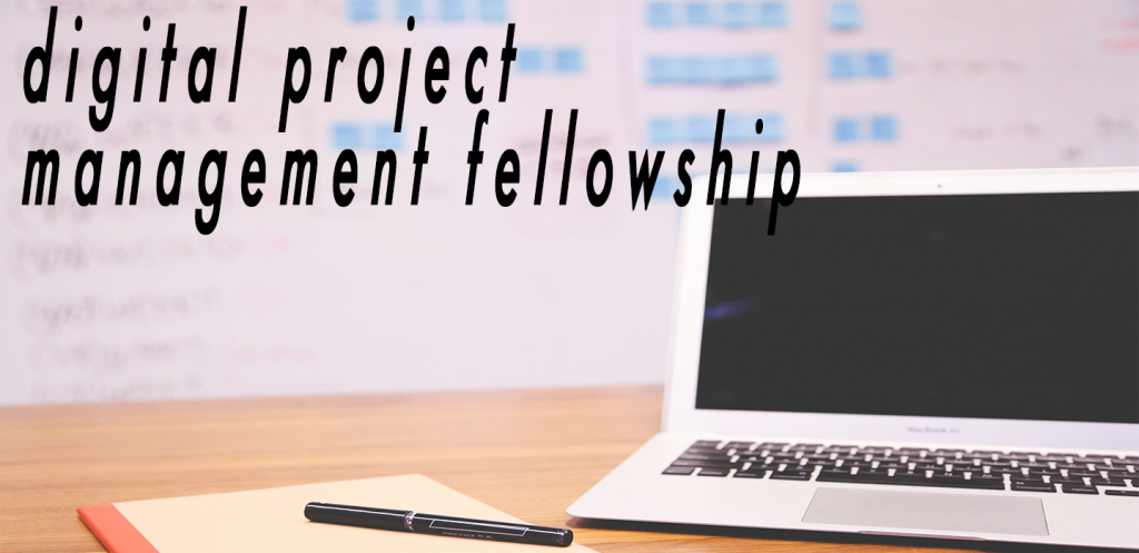 digital project management fellowship